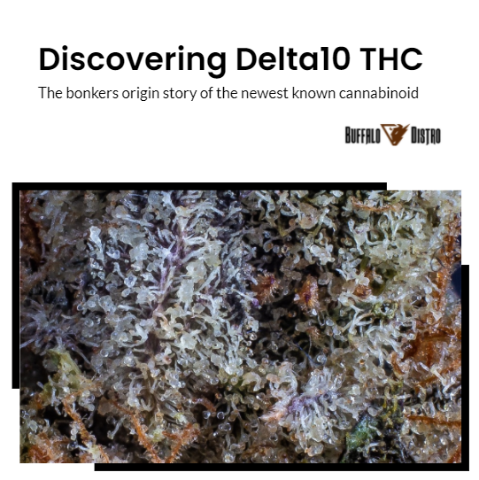 Discovering Delta 10 THC